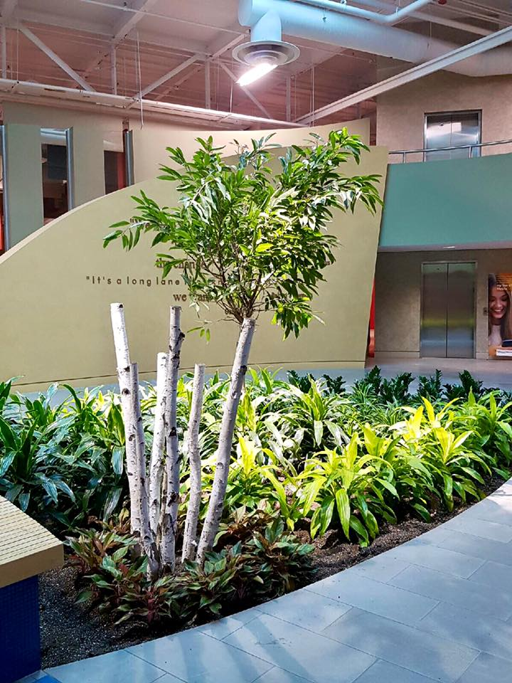 Interior Landscaping Products