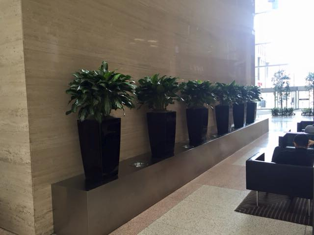 For Spaces In Your Home Or Office Where A Lack Of Natural Light Will Not  Allow Plants To Grow Well, Natural Looking Artificial Plants And Flowers  Allow You ...